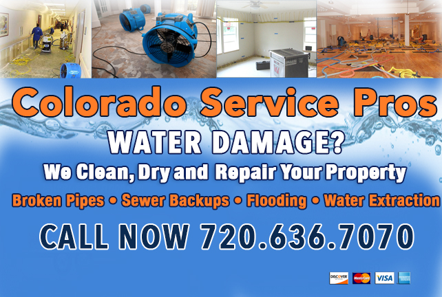 Water Damage Service Pros