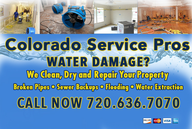 Water Damage Service Pros